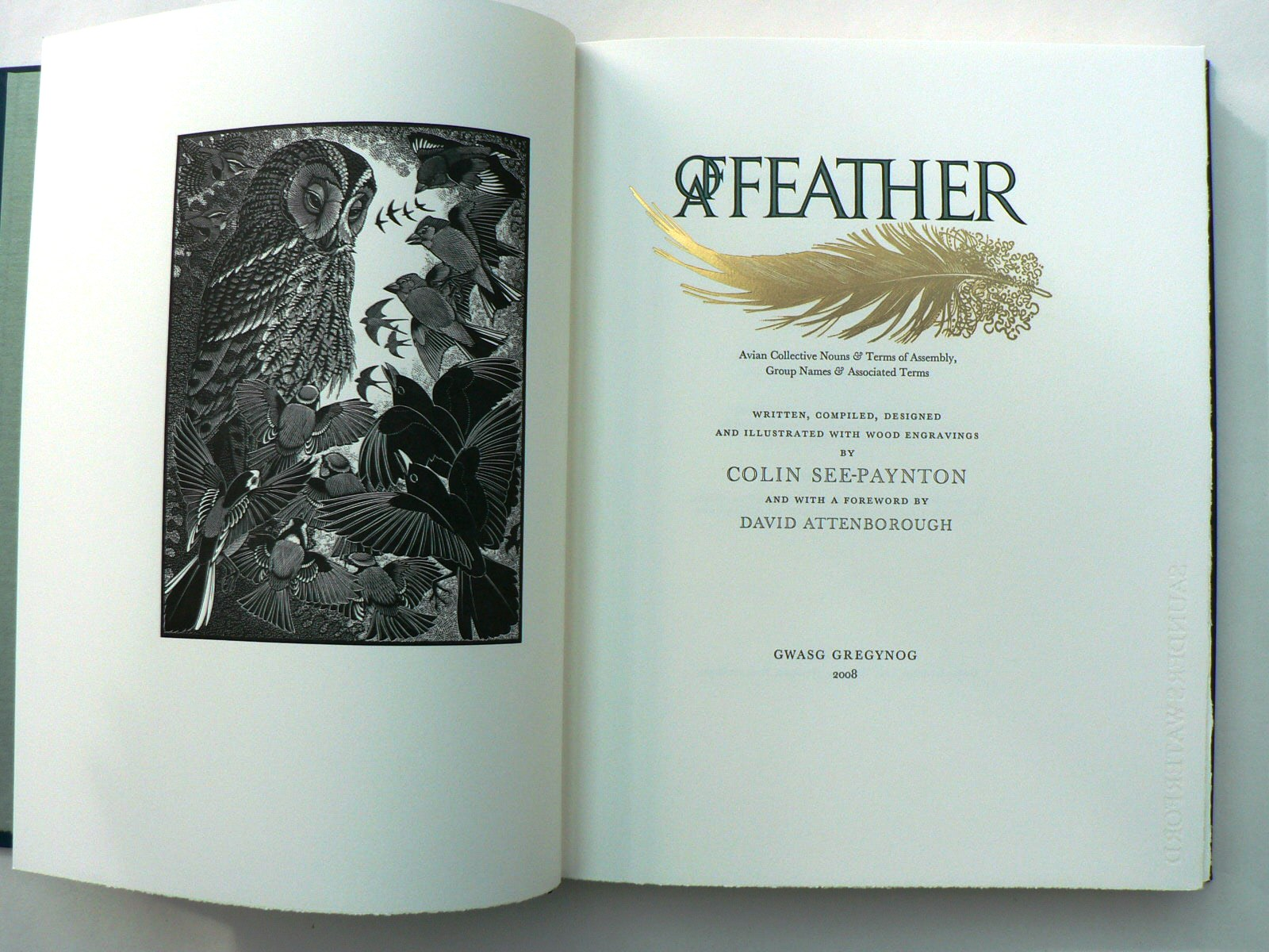 Of A Feather